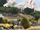 오포읍묘지 #2