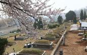 오포읍묘지 by 장지