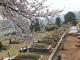 오포읍묘지 #3
